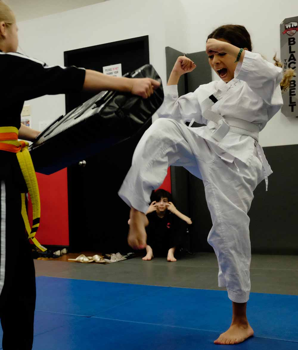 Kids Beginner Karate